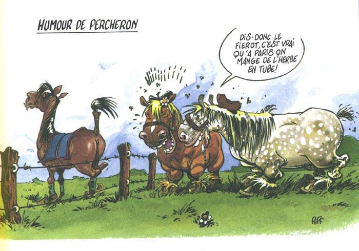 Le Site Cheval Galeries Photos Dessins Humoristiques