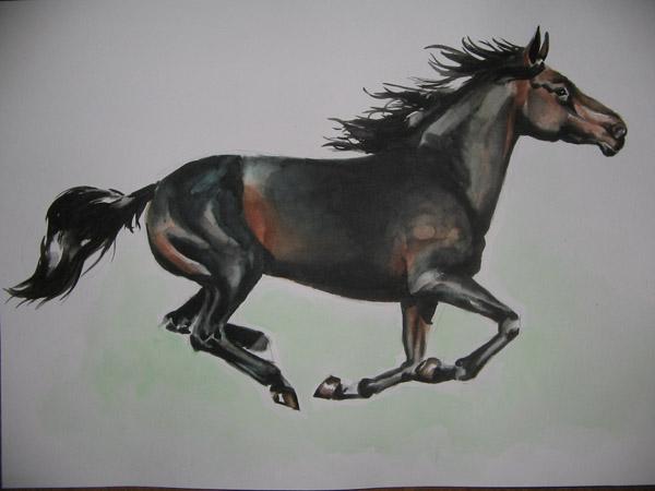 Le site cheval galeries photos membres du site cheval marion37 equitation p dagogique et - Comment dessiner un cheval au galop ...