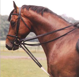 http://www.le-site-cheval.com/materiel/images/renes_allemandes1.jpg